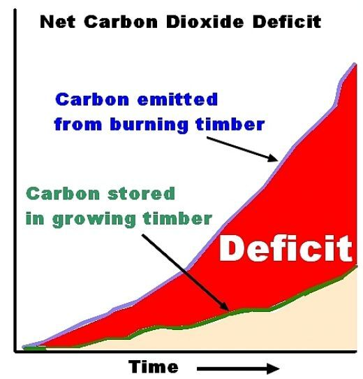 Carbon deficit needs to be tackled to beat climate change