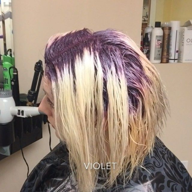 #hairbrained Instagram - Photo and video on Instagram