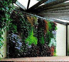 http://janderson99.hubpages.com/hub/Wall-Gardens-and-Supported-Vertical-Garden-Ideas-Designs-Tips