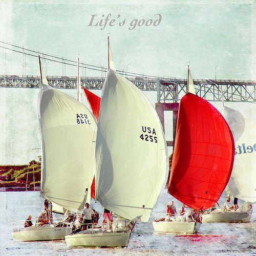 memorial day boat races newberg oregon