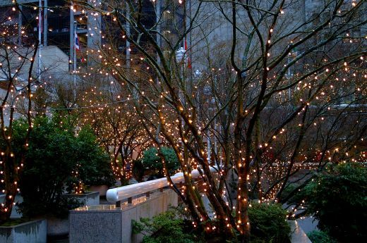 Outdoor lights for the patio, so cozy and dreamy.  Have them in front!  Need them in back of house.