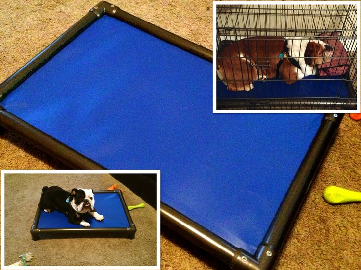 Kuranda Dog Beds: Orthopedic, Chew proof, Easy to Clean - We LOVE them and so do our dogs !