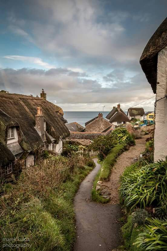 Cadgwith, Cornwall is a lovely place to travel in the UK. - Really great sense of natural landscaping and interesting world detail in just this pathway.