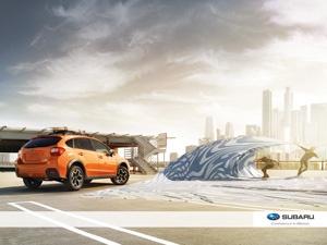 Best Loving Subaru Images On Pinterest Cars Car Stuff And - Subaru graduate program