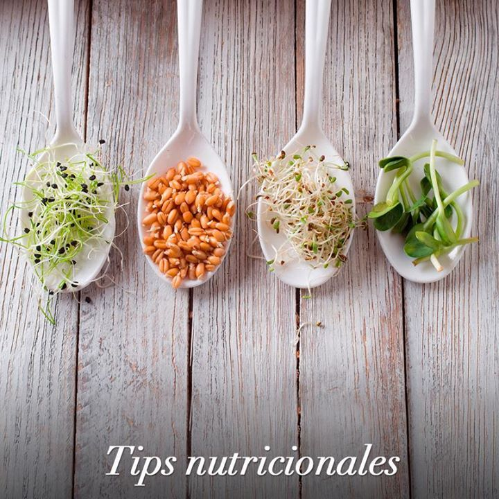 Add sprouts to your diet, their benefits to the body are wide: they are rich in nutrients, antioxidants and strengthen the immune system. Enjoy them!
