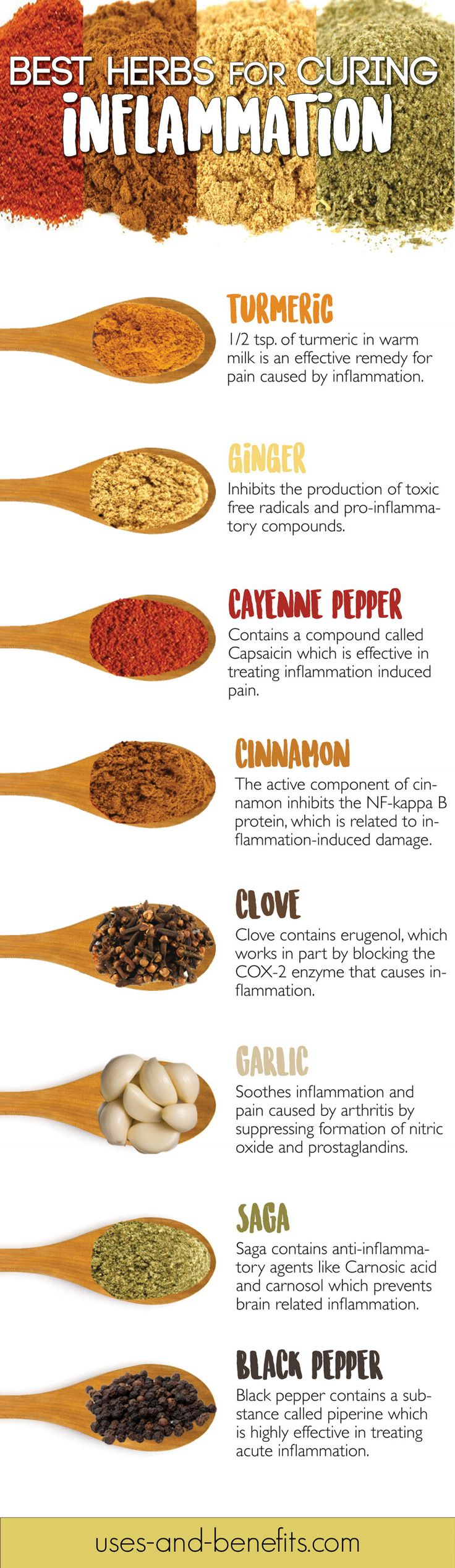 Infographic: The Best Herbs For Curing Inflammation Fast - DesignTAXI.com