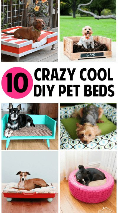 17 Best Images About Your Crafty Family On Pinterest Diy