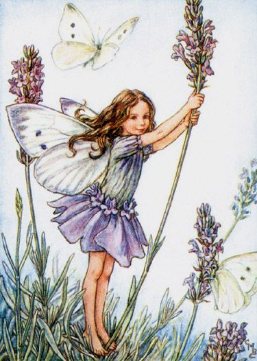 I used to have a duvet cover with all the flower fairies on it when I was little. I loved it so much!!!
