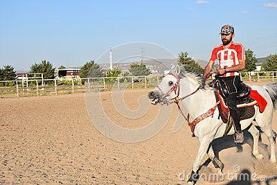 Horse and jockey activity agility animal