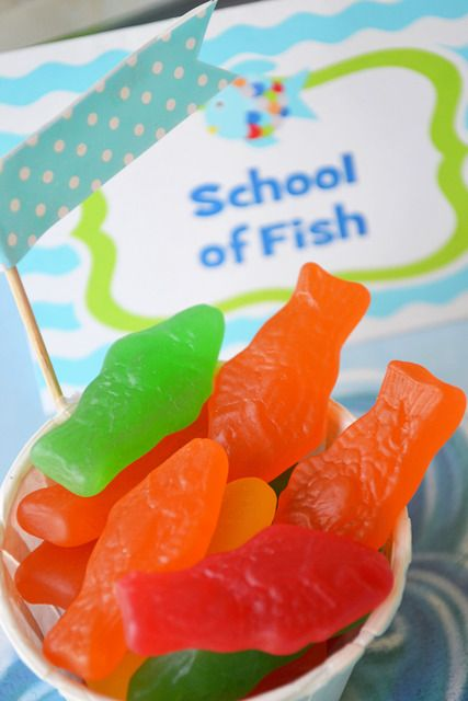 17 best ideas about rainbow fish costume on pinterest for Swedish fish costume