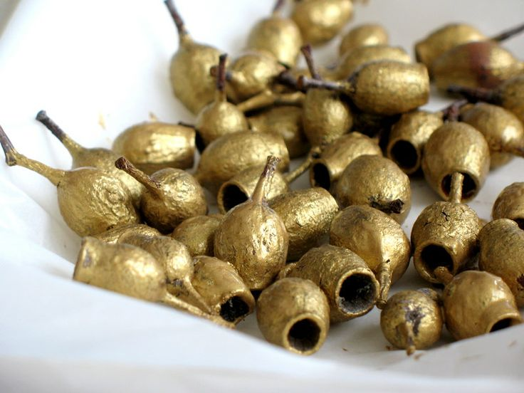 lottielulu: golden gumnuts - floristry wire and tie them to your gift wrap as decoration...