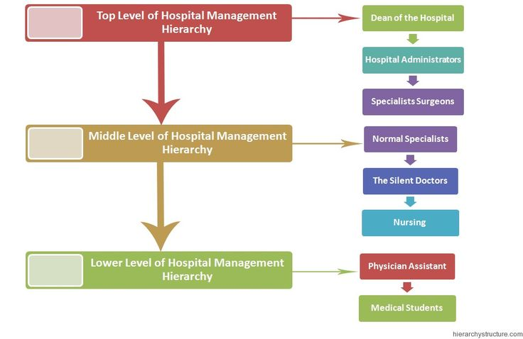 structure of the hospital learning material The california hospital association's hospital preparedness program provides support to hospitals / health systems in disaster hics basics course information & materials september 6 the hospital's incident command structure is integrated and consistent with its community's command.