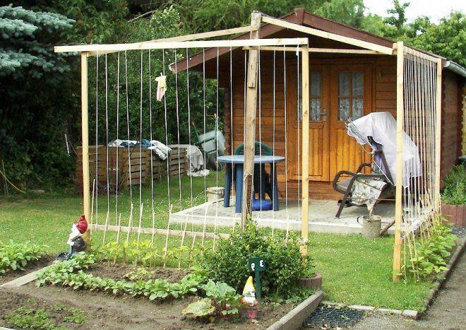 Bohnengestell selber bauen :-) Gestelle für Kletterbohnen, Stangenbohnen und Feuerbohnen (Sichtschutz)