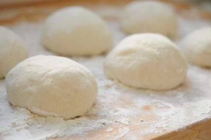 A new pizza dough to try! Nancy Silverton's Pizza Dough