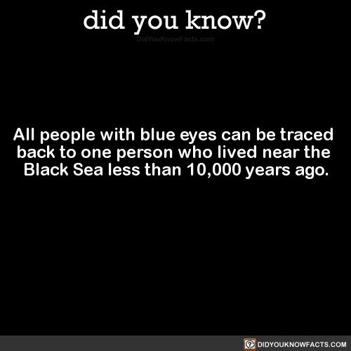 all-people-with-blue-eyes-can-be-traced-back-to
