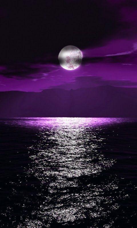 Cool Moonlight  http://www.wpsubscribers.com/?hop=topogiyo  http://www.desktoplightingfast/Zorro123 http://www.laptoptrainingcollege.com http://welbor.553.clicksurecpa.com/