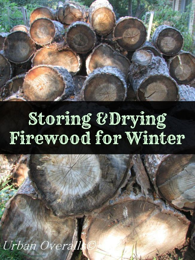 How to dry and store firewood for winter