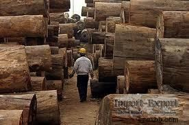 hardwoods , Logs, timber and sawn timber for sale