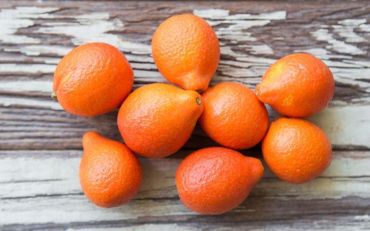 Organic Mandarinquat [a cross between an mandarin and a kumquat]
