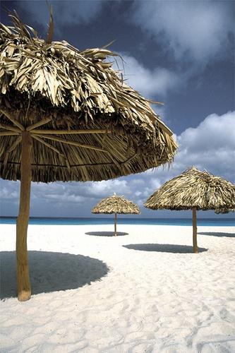 Eagle Beach, Aruba the white sand was amazing!