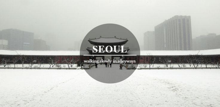 Seoul travel - Sunshine, Breeze, and Cat.
