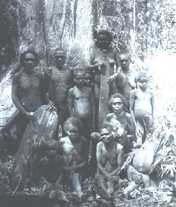 The Ngadjonji people c1890