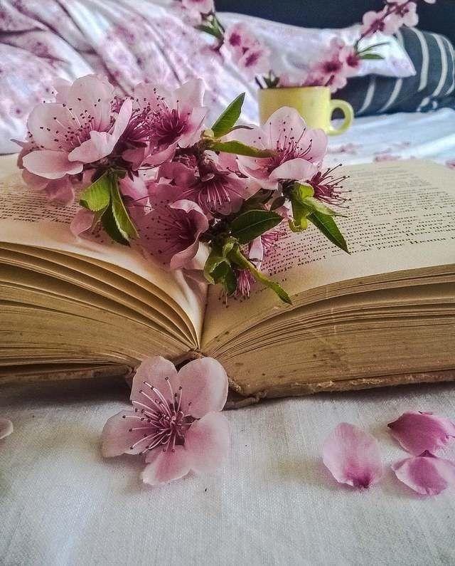 специализации книги красивые фотографии цели