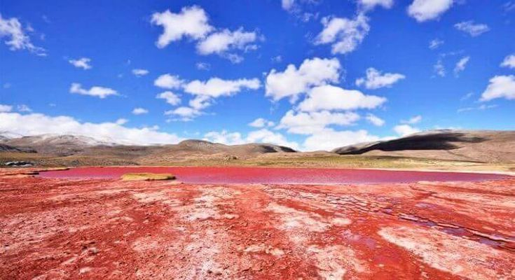 Descubre el secreto mejor guardado del norte de Chile, visitando los pueblos de Huara y Camiña, los petroglifos de Chillayza y la misteriosa Laguna Roja.