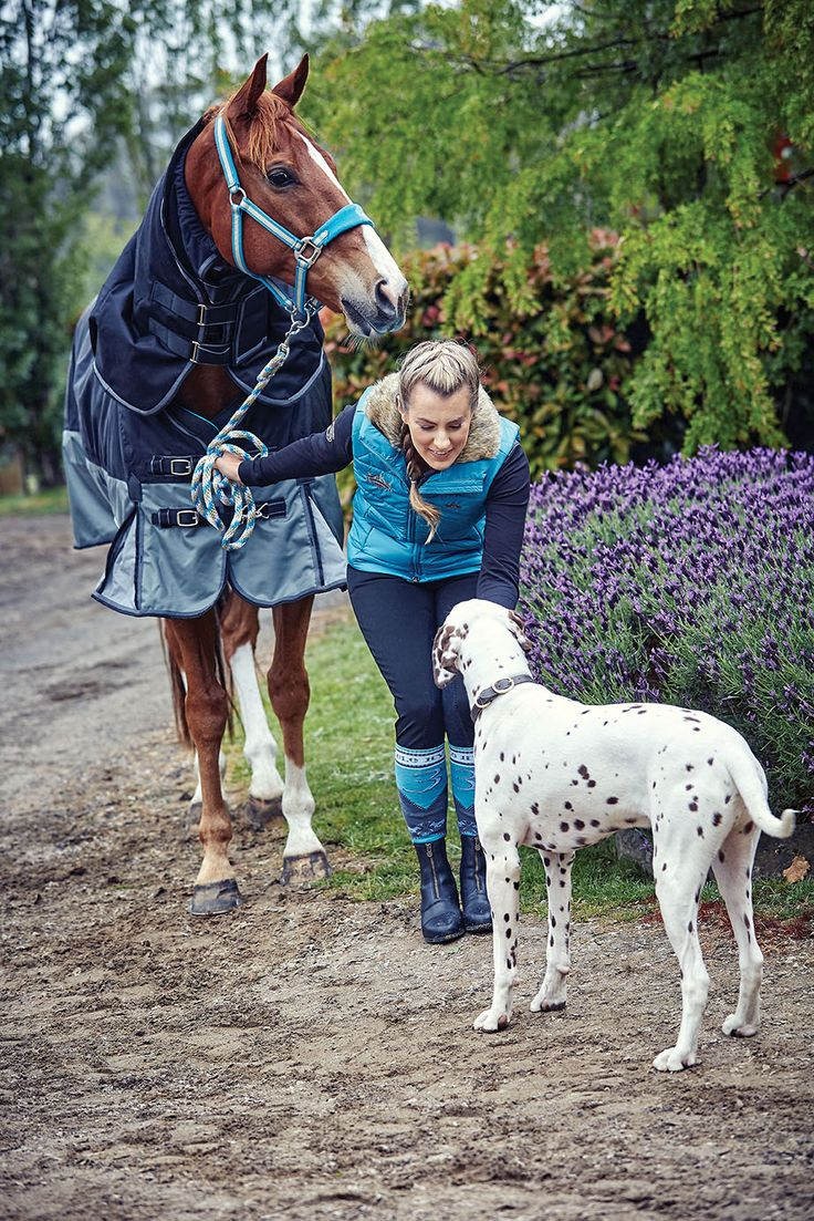 Rosso Asiago, Horseland sponsored rider, Chelsea Priestley and the too cute Torch #horselandsponsoredrider #horselandsponsors #horselandautumnwinter