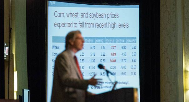 Updated projections by the Agriculture Department on Thursday forecast significant price declines for corn, wheat and even soybeans — all large enough to trigger potential payments under the new farm bill. Corn stands out the most, with average prices dropping to $3.90 per bushel in the coming crop year, even after the department assumes reduced...
