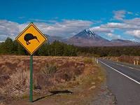В Новой Зеландии больше десятка национальных парков, два из которых — морские. Самым известным считается парк Тонгариро, занесенный в список всемирного наследия ЮНЕСКО. В парке имеются три черных потухших вулкана, вполне живые гейзеры, чье шипение доносится со всех сторон, и Изумрудное озеро такого нереально зеленого цвета, что отвести от него взгляд совершенно невозможно.