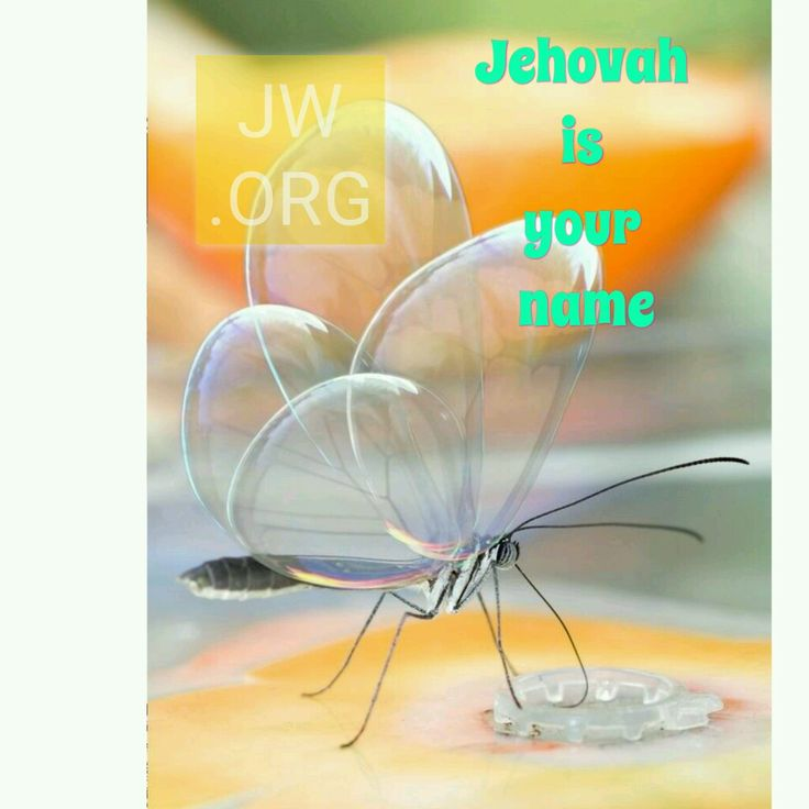 Holy Name Jehovah