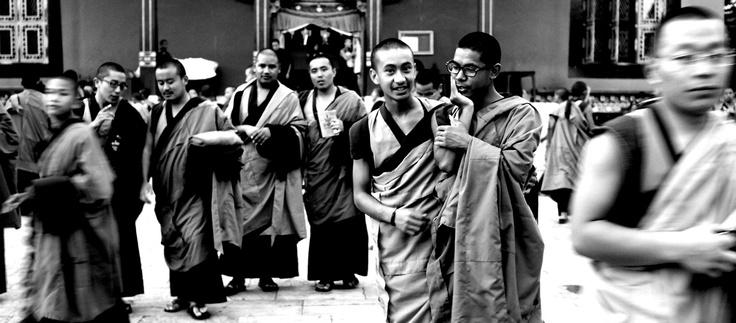 Nepál FF… momo és makuka…