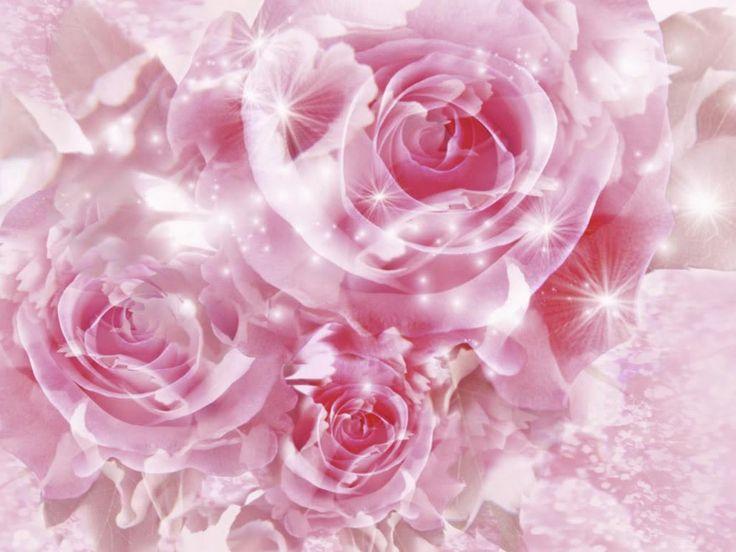 8 best Favorite wallpaper images on Pinterest | Pink wallpaper ...