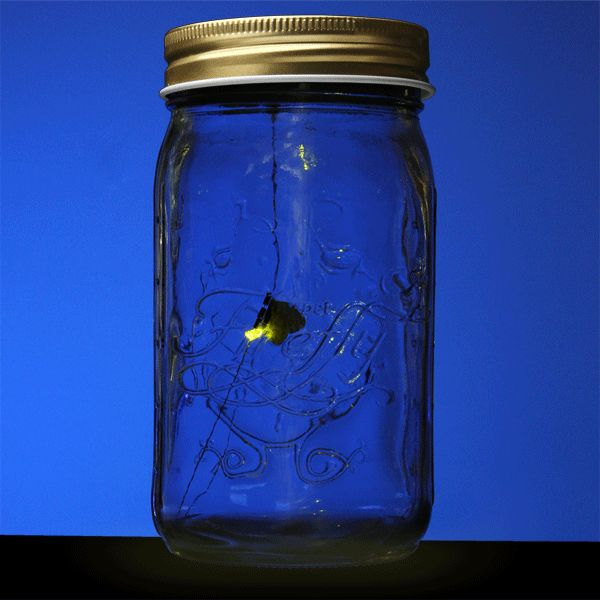 ThinkGeek :: Electronic Firefly in a Jar