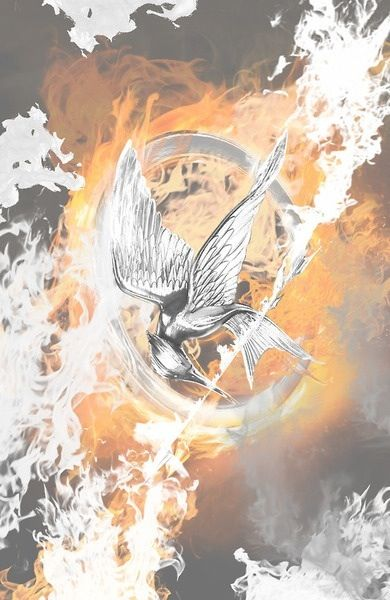 Catching fire come out on Monday can't wait !!!!! :D