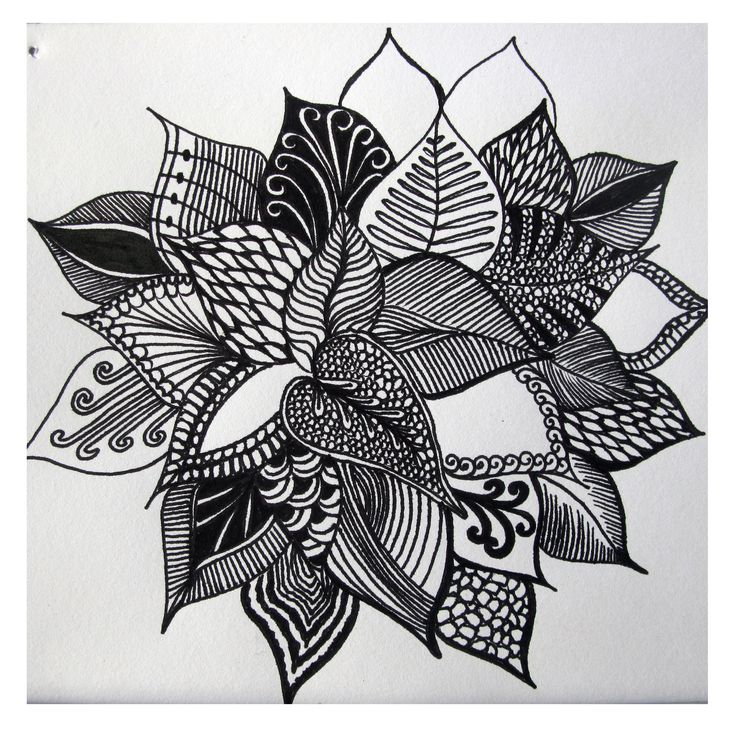 Flower petals with a different design in every leaf 5 days of flower drawings