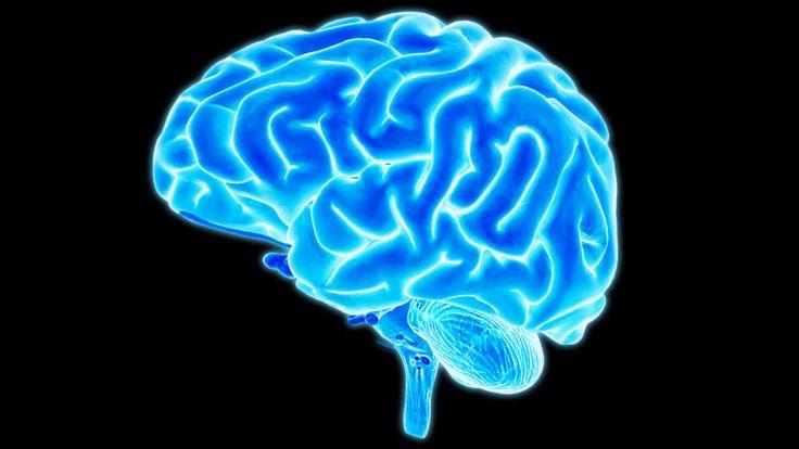 Pokud si přečtete tuto stránku až do konce, odhalíte fascinující příběh lidského mozku, který vám