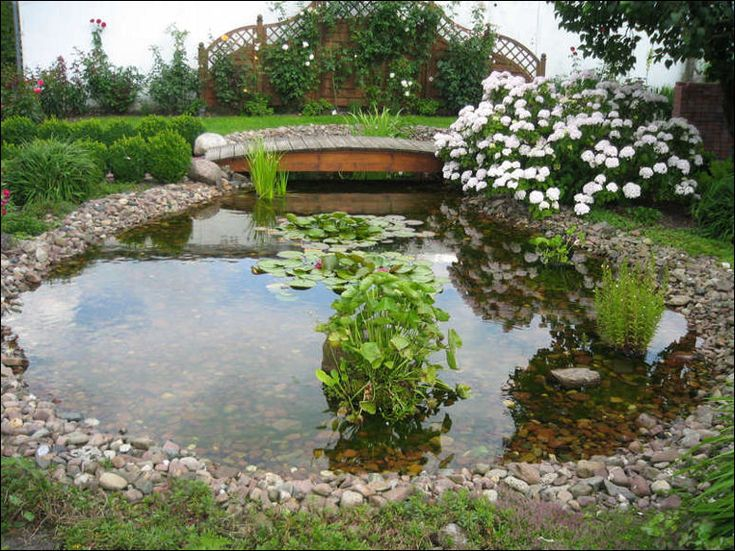 15 best images about koi ponds on pinterest gardens for Backyard pond designs