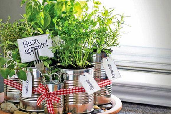 como transformar latas de alumínio em uma linda mini horta 01