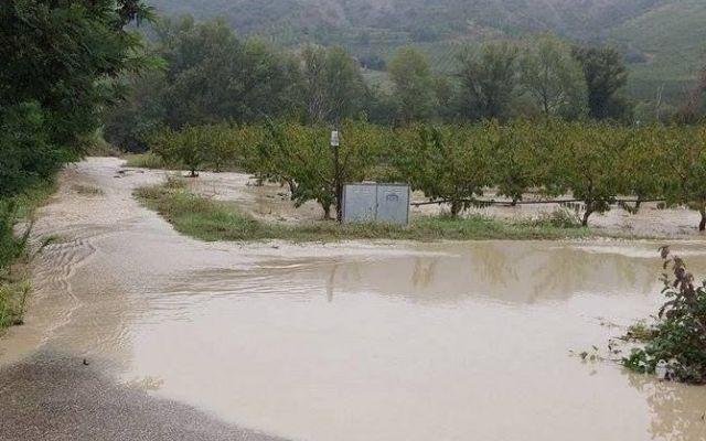 La foga dell'istante si oppone alla fuga dell'istinto? #imola #santerno #alluvione #facebook
