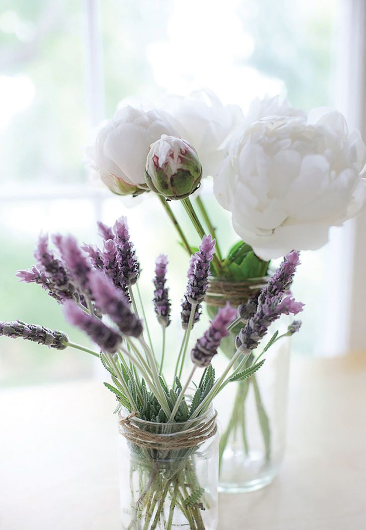 French lavender and white peonies