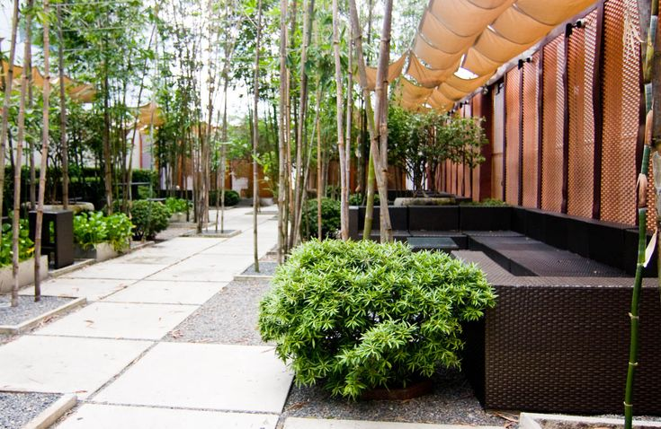 Minimalist garden to landscaping your home - Gardening for small spaces minimalist ...
