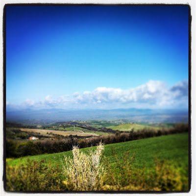 Dal Monte #Amiata verso la #Maremma pic Luisa Rosini