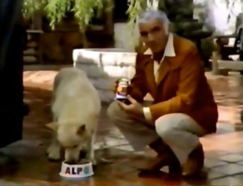 Alpo Dog Food Commercial (Lorne Greene, 1976)