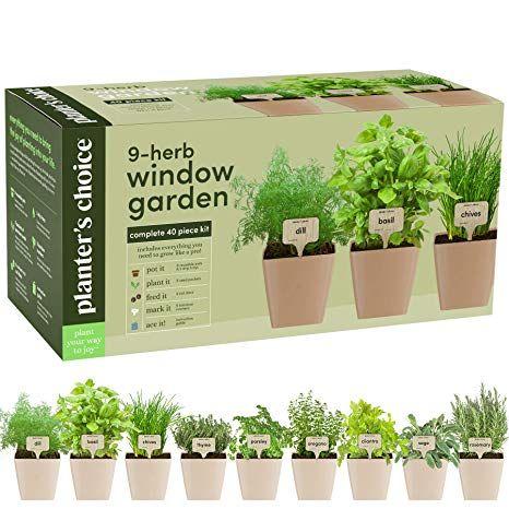 Amazon Com 9 Herb Window Garden Indoor Organic Herb 640 x 480