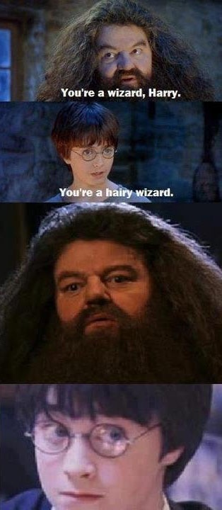 yer a wizard harry.  you're a hairy wizard.