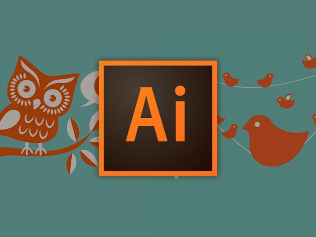 This 41 Hour Training Covers Adobe Photoshop Indesign Illustrator To Help You Fast Track A Creative Career Professional Graphic Design Graphic Design Tools Design Skills