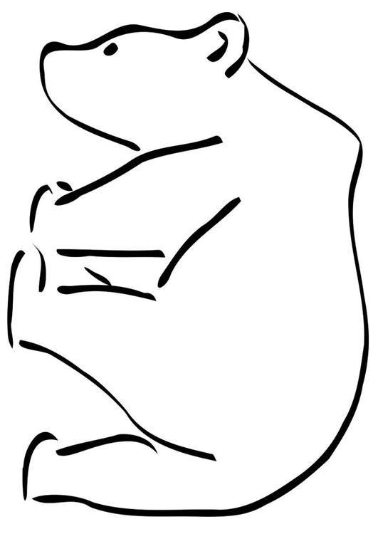 17 meilleures id es propos de b b ours polaires sur pinterest chiens d 39 ours polaires - Comment dessiner un ours ...