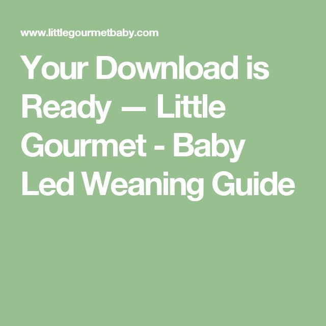 Your Download is Ready — Little Gourmet - Baby Led Weaning Guide